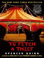 To Fetch a Thief