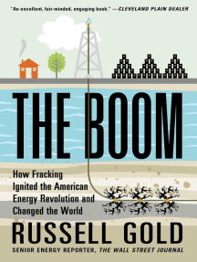 The Boom: How Fracking Ignited the American Energy Revolution and Changed the World