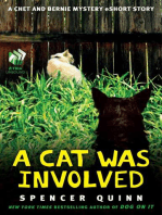 A Cat Was Involved