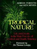 Tropical Nature