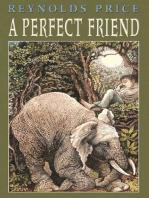 A Perfect Friend