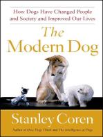 The Modern Dog