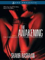 The Awakening: Book One of the Chronicles of the Nubian Underworld