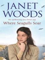 Where Seagulls Soar