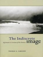 The Indiscrete Image