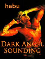 Dark Angel Sounding (A Gay BDSM Erotica)