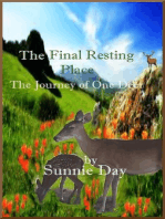 The Final Resting Place:The Journey of One Deer