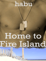 Home to Fire Island ( A Gay Erotica/ Gay Coming of Age)