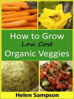 How to Grow Low Cost Organic Veggies