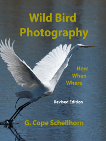 Wild Bird Photography: How, When, Where: ------