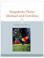 Snapshots Three