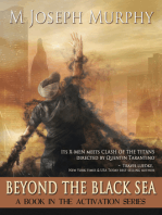 Beyond the Black Sea