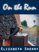 On the Run (Rocky Mountain Home Series, #2)