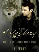 The Siege of Kadenburg
