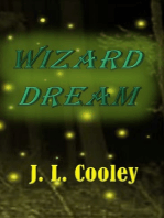 Wizard Dream