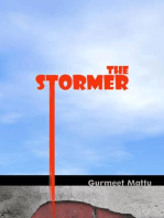 The Stormer