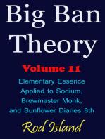 Big Ban Theory
