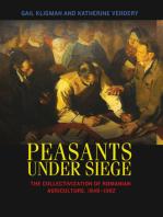Peasants under Siege