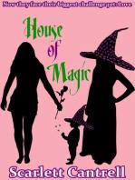 House of Magic (The Magic Baby Series, #3)