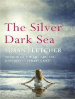 The Silver Dark Sea