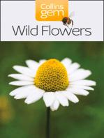 Wild Flowers (Collins Gem)