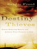 Destiny Thieves