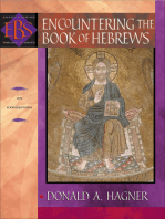 Encountering the Book of Hebrews (Encountering Biblical Studies)