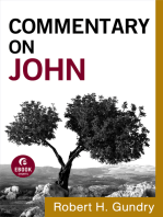 Commentary on John (Commentary on the New Testament Book #4)