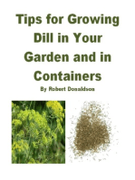 Tips for Growing Dill in Your Garden and in Containers