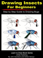 Drawing Insects For Beginners