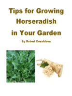 Tips for Growing Horseradish in Your Garden