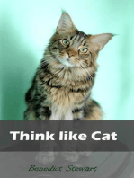 Think like Cat