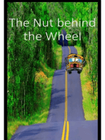 The Nut Behind The Wheel