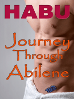 Journey Through Abilene