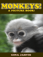 Monkeys! (Cute Animals Series, #3)