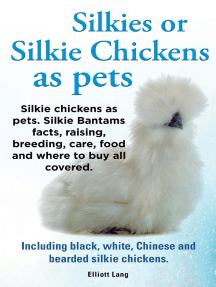 Silkies or Silkie Chickens as pets. Silkie chickens as pets. Silkie Bantams facts, raising, breeding, care, food and where to buy all covered. Including black, white, Chinese and bearded silkie chickens.