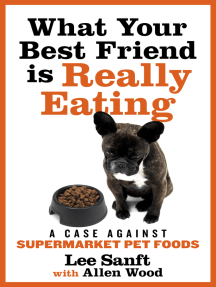 What Your Best Friend is Really Eating: A Case Against Supermarket Pet Foods