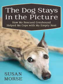 The Dog Stays in the Picture: How My Rescued Greyhound Helped Me Cope with My Empty Nest