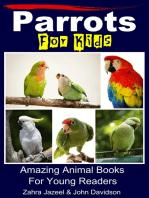 Parrots For Kids