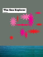 The Sea Explorer