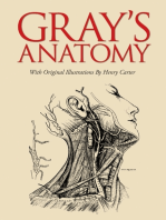 Gray's Anatomy