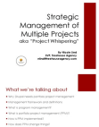 Strategic Management of Multiple Projects