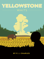 Yellowstone Waits