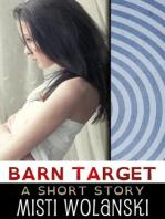 Barn Target (Overhill)