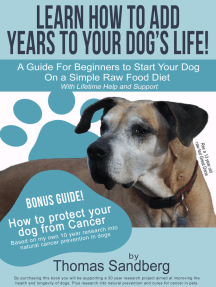 Learn How to Add Years to Your Dog's Life!