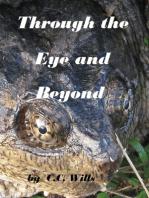 Through the Eye and Beyond