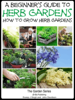 A Beginner's Guide to Herb Gardening