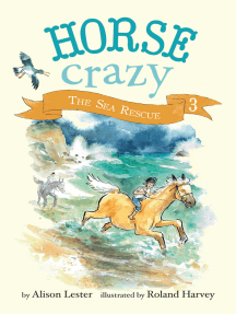 The Sea Rescue: Horse Crazy Book 3