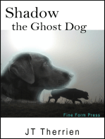 Shadow the Ghost Dog
