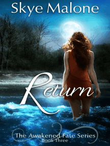 Return: Awakened Fate, #3